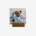 Revelado Cuadrado/Instagram