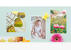 Photo Prints - 30% OFF orders over $50