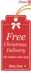 Free Delivery on Christmas orders over £35