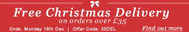 Free Christmas Delivery on orders over £35