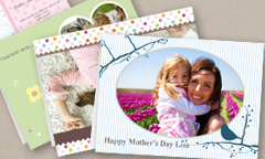 card_theme_formum